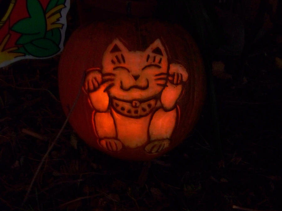 1000 images about pumpkin carving ideas on pinterest for Cat carved into pumpkin