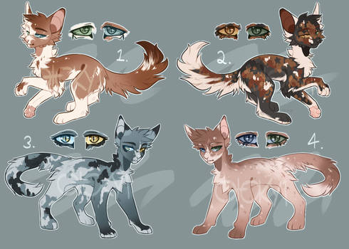 Heterochromia Cat Adopts |$15 Ea.|