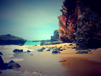 1000 Steps Beach, Laguna California by Wyvanna
