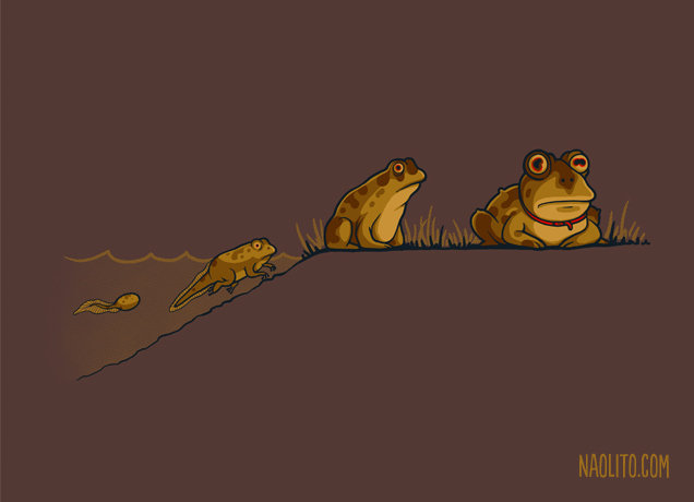 Evolution of Hypnotoad