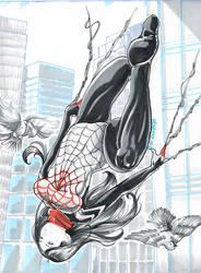 Silk by genesis-rdz