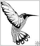 Pen and Ink - Humming Bird
