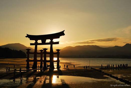 Torii gate by gnohz