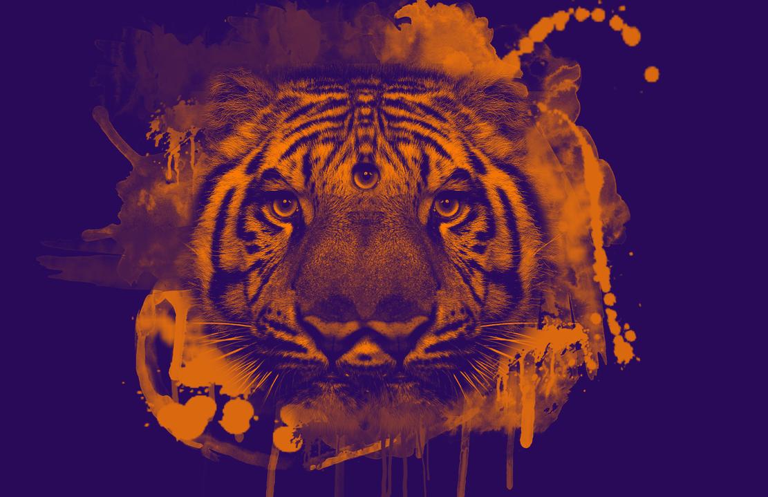 Trippy Tiger by sol0dolo