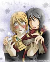 HP Sirius and Remus by Eddie-Zato1
