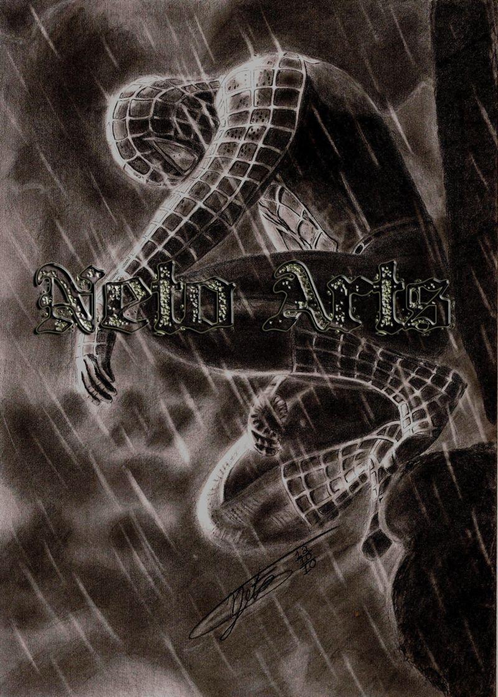 Spider Man by Netoarts