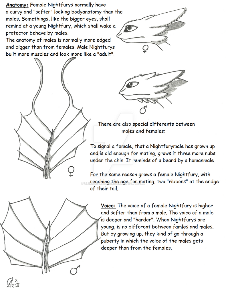 Nightfury facts- Females and Males by spiritdaughter on DeviantArt