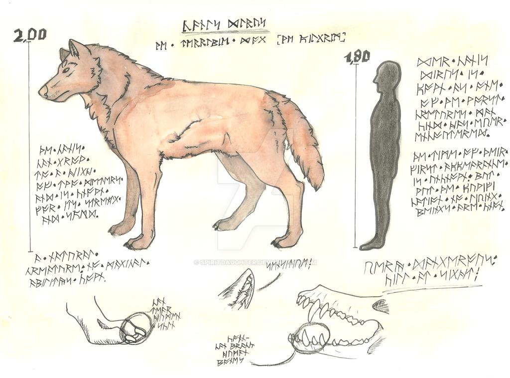 P.B. Encyclopedia- Canis Dirus by spiritdaughter