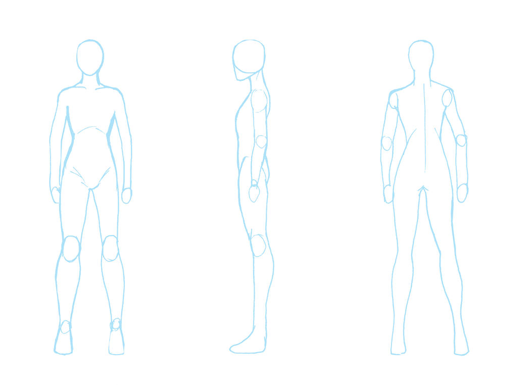 blank human diagram blank free engine image for user