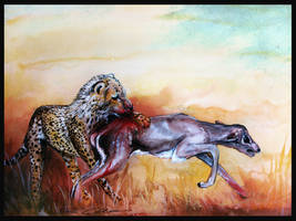 Circle of life by PixieCold