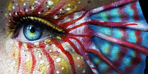 Paradise Fish