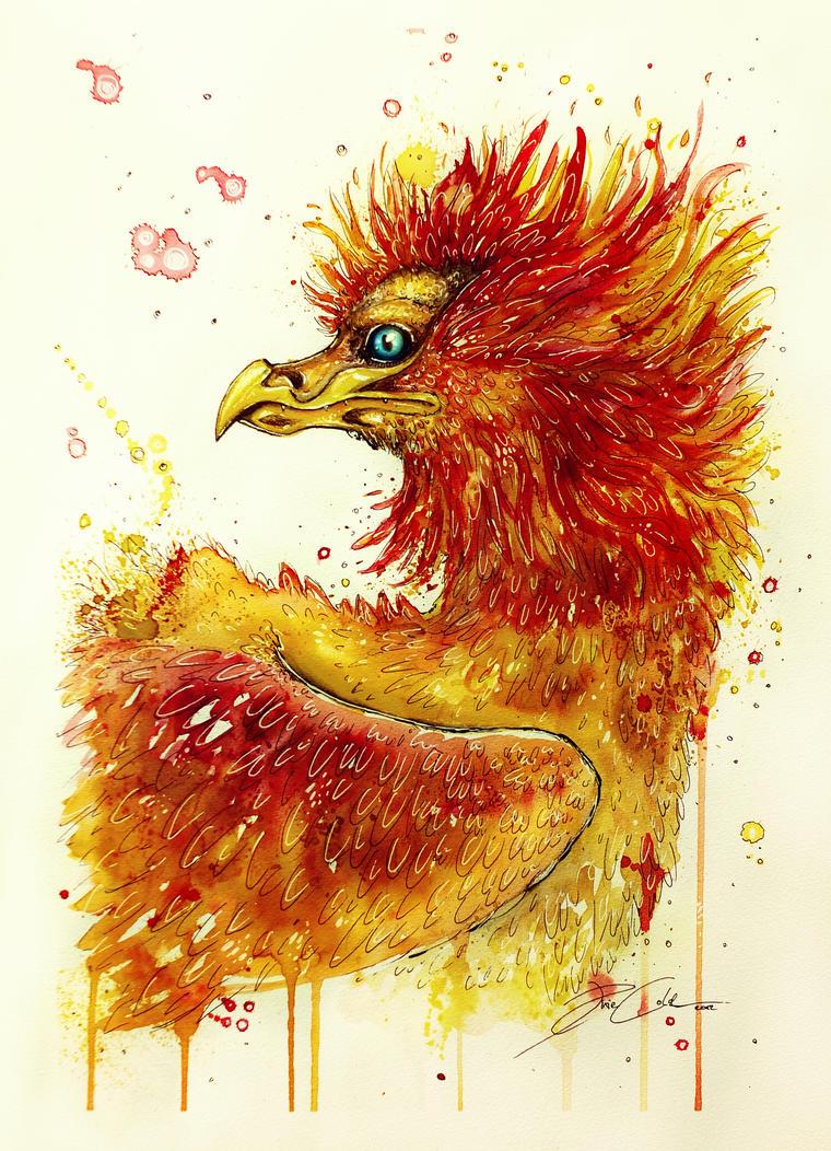 Portrait of a Phoenix (on sale) by PixieCold