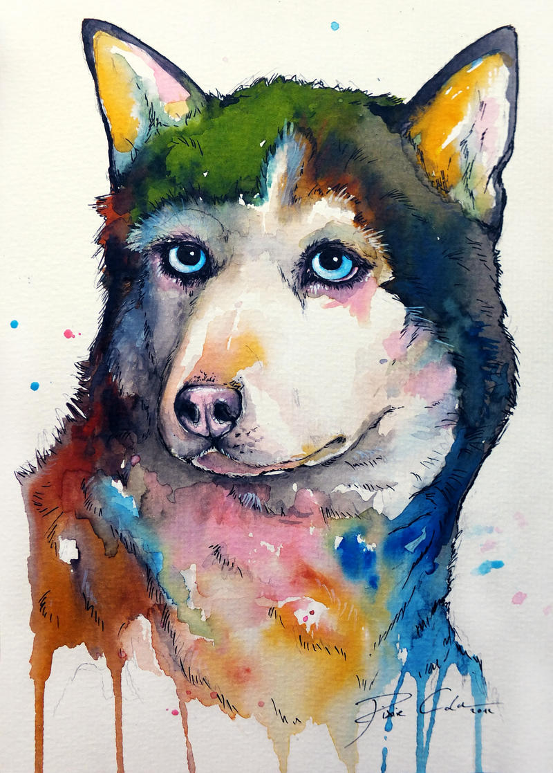 Colour Husky by PixieCold