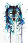 Dark Wolf -on sale-