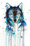Dark Wolf -on sale-