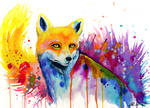 The fox -on sale-