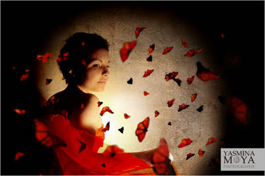Phoenix by YasminaMoya
