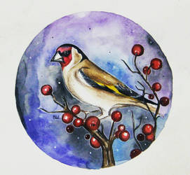 Goldfinch  by vikisheptalina