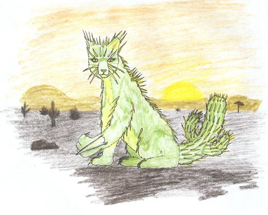 Cactus Cat at sunset by ayellowbirds