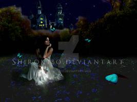 Cinderella's Patience