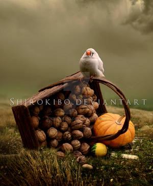An Unfortunate Halloween by Shirokibo