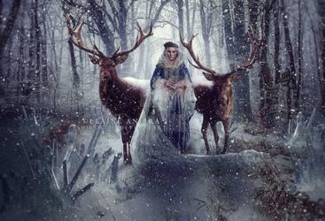 Snow Queen by Shirokibo