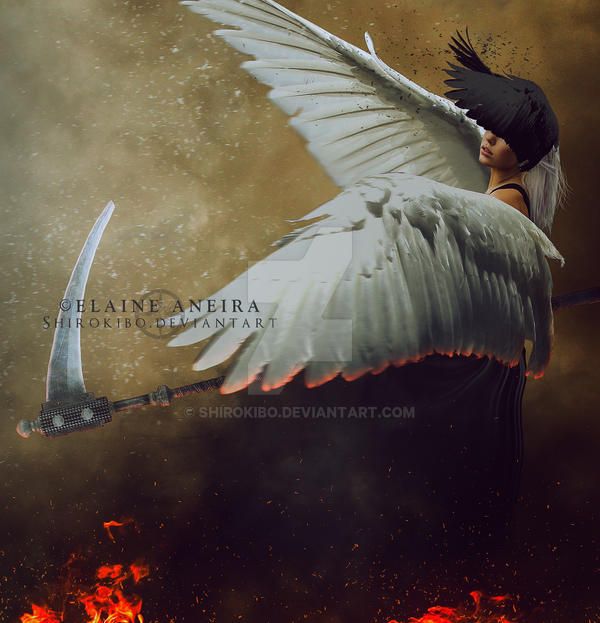 Wings of Destruction by Shirokibo