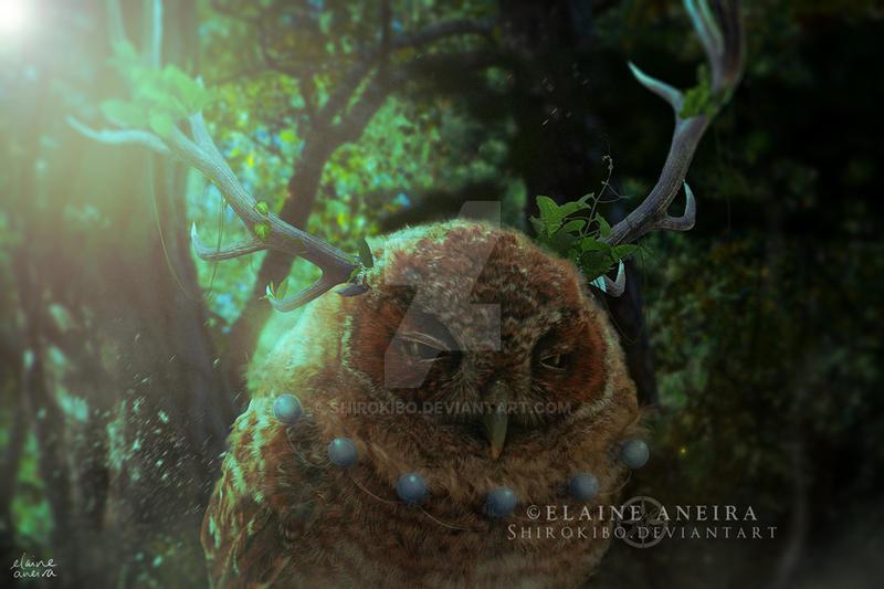 Owl Shaman by Shirokibo