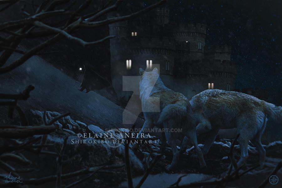 One Winter Night by Shirokibo