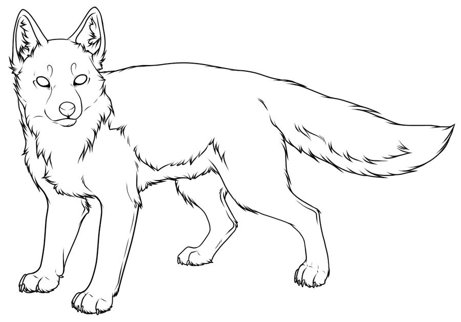 Line Drawing Fox : Fox outline imgkid the image kid has it