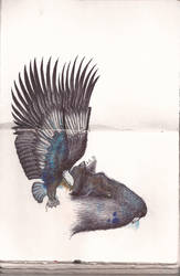 Eagle's catch by Pandannabelle