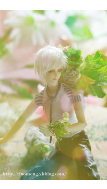 Flowery boyII by Ringdoll