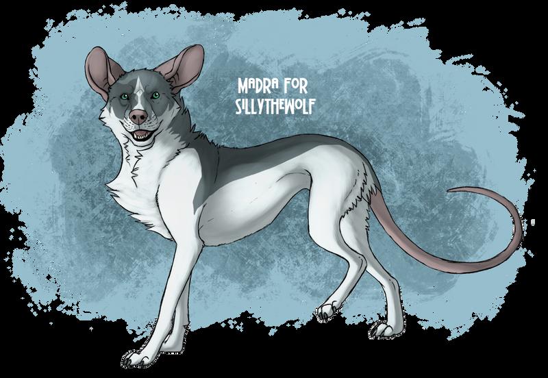 Adoptable Madra - SillyTheWolf by Mikaley