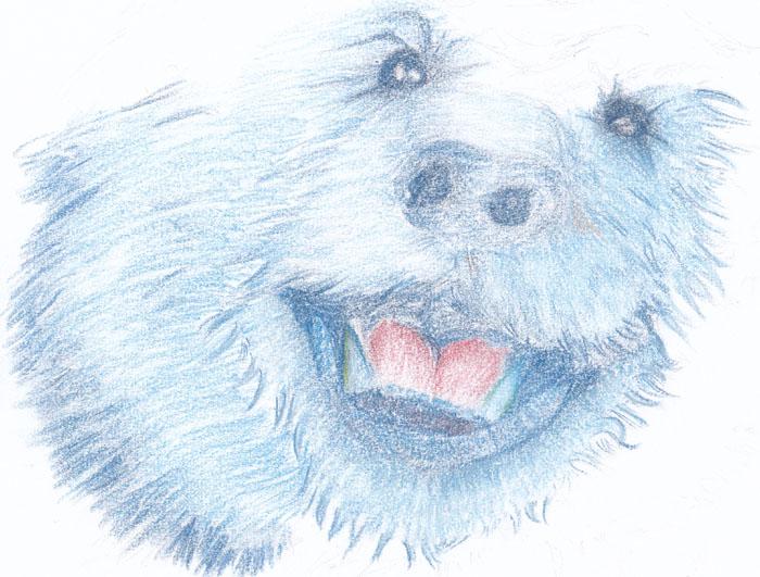 blue bear by Talikmon