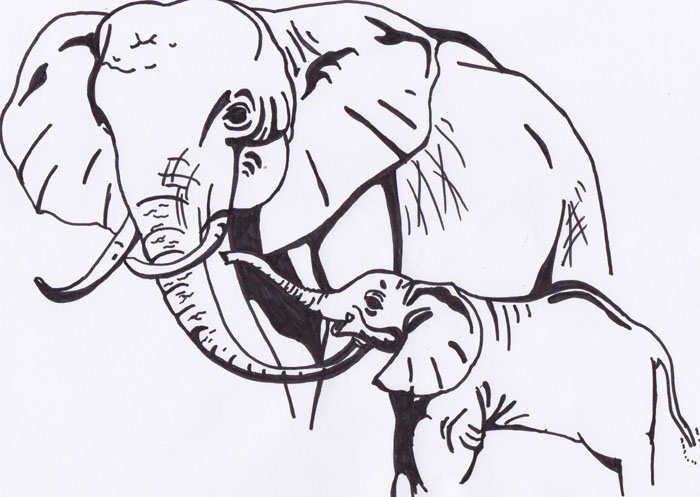 15 minute doodle - elephants by Talikmon