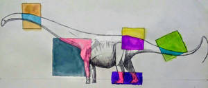 Barosaurus study