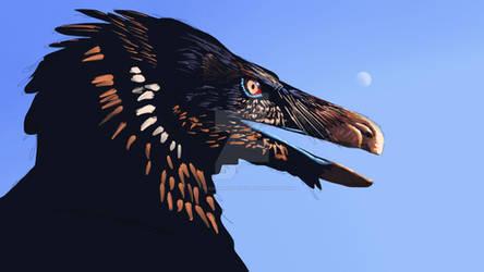 Velociraptor study