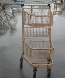 Lone Cart by UntitledRoadWay