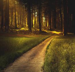 Forest Premade Background by LovizZ