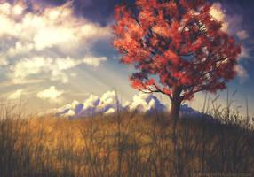 autumn tree by dann94