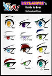 Guide to Eyes: Introduction