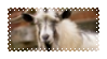 billy goat stamp by shrimpson
