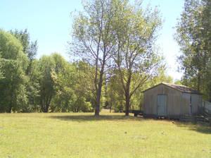 Rural Paddock