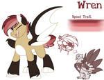 Pony Reference-Wren