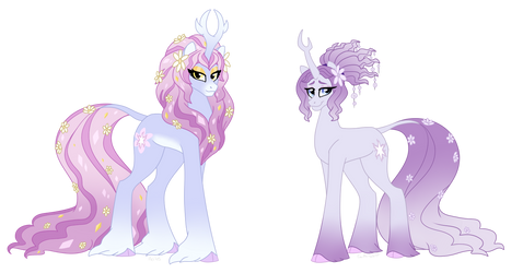 Harmony, Before and After by Faith-Wolff