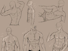 male anatomy practice