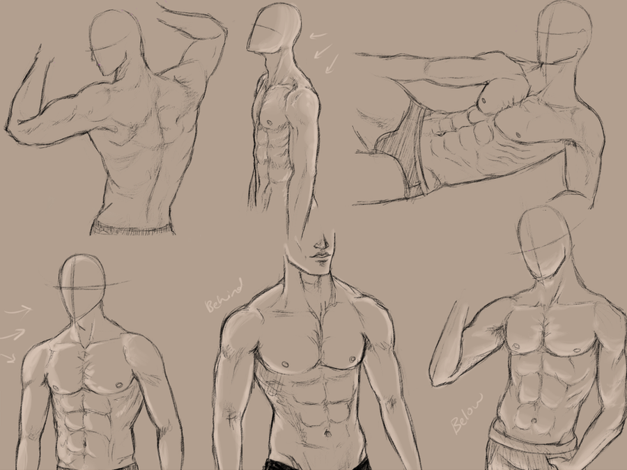 Male Anatomy Practice By KingMaria On DeviantArt
