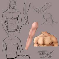 Random Male Anatomy Practice by KingMaria