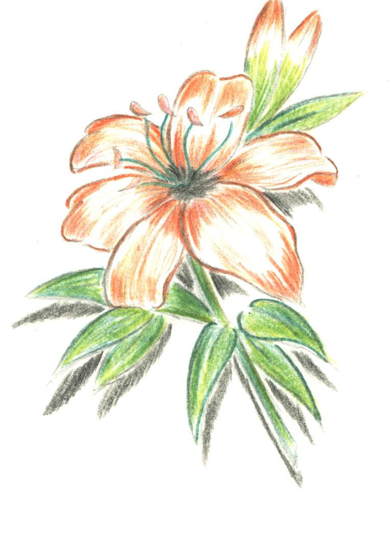 Chinese flower - flower tattoo