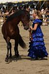 Andalusian horse stock II